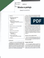 Metodos de Patologia