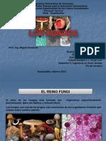 Exposición- HONGOS