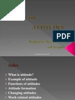 FHS Attitudes