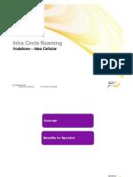 ICR_1.pdf