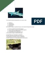 Examen ecologia sexto