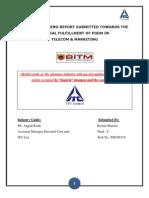 121185286-100861895-Shampoo-Report-BIMHRD