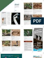 Snakes and Snakebite Go/Weg Magazine