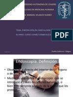 endoscopía ginecológica