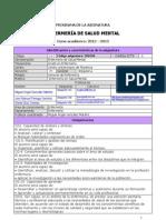 Ficha Enfermería en Salud Mental -Grado- 2012-2013