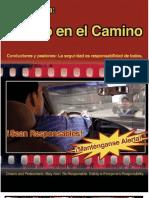 Spanish Ped Brochure