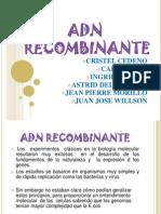 Adn Recombinante (2)