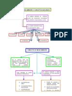 Medio Ambiente y Conceptos Asociados Mapa Conceptual