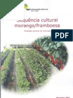 Morango - Framboesa