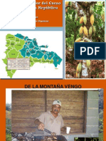 Cadena de valor del Cacao Orgánico en la RD