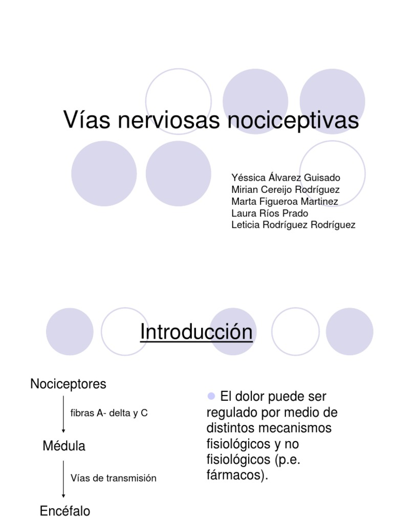 TB 5D Vias Nerviosas Nociceptivas