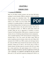 SUMMER INTERSHIP IN Panjab National Bank