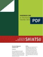 Shiatsu Booklet Patrick Tanner