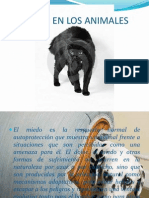 diapositivas miedo.pdf