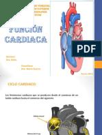 Semi de Funcion Cardiaca