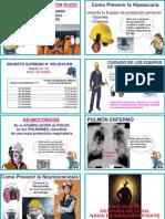 Afiche Salud Ocupacional Neumoconiosis - Hipoacusia Inducida por Ruido.pdf
