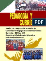 Guia Pedagogia Curriculo DCN