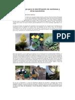 5 Guía de campo para identificación de cactáceas
