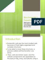 Biochem34.1 Exp2 Report