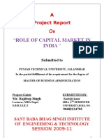 Capital Market Final Report