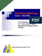 Dms146 Slide Dermatopathology