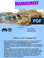 Cash Management sgfdgdfg
