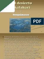 El Desierto Kalahari (3)