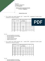 Subiecte Organizare II