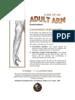 Adult arm