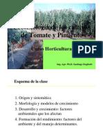 Fisiologa Tomate y Morrn
