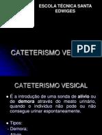 Cateterismo Vesical - Sharon Aula 2
