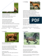 a5_Kartei_Bauernhoftiere