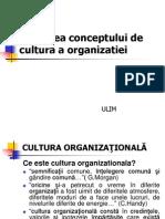 Cultura Organizatiei