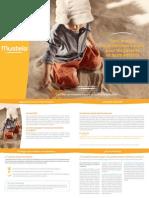 MSOL BrochureSolaires FR