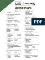 Practica 10- Sistema Urinario[1]