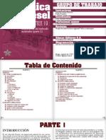 volumen 19