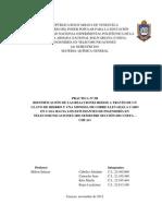 INFORME II REACCIONES REDOX.docx