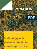 Growing Plants / Germination