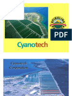 Spirulina cyanotech