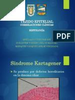 Histología y Patología del Tejido Epitelial