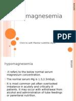 Hypo Magne Semi A
