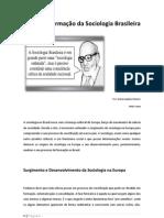 A Formação da Sociologia Brasileira