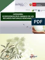 ProyectoRelima2012.pdf
