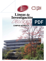 Libro Lineas de Investigacion Def