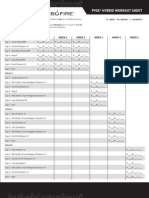 P90X Turbofire Hybrid Worksheets