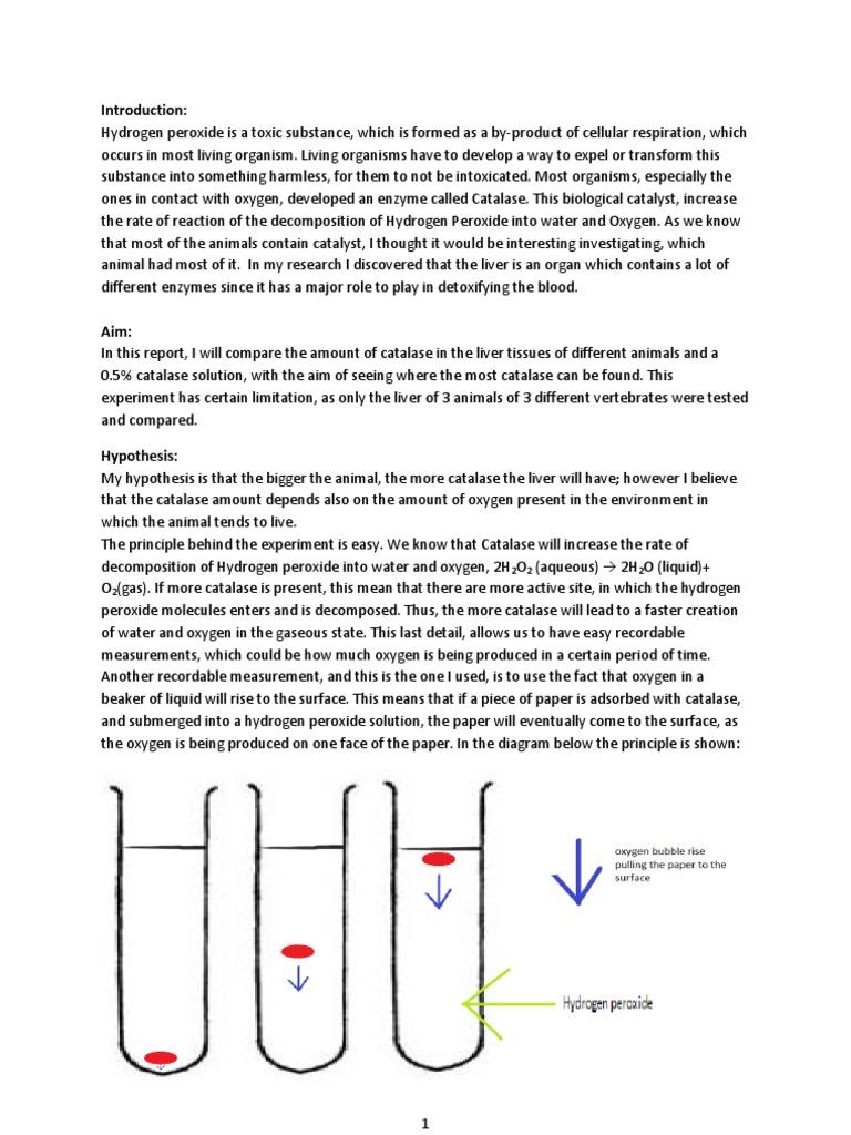 liver catalase lab report