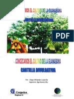 Conocimiento Del Cultivo de Guanabana