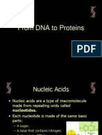 Protein Synthesis Lecture Powerpoint