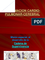 7214648 Reanimacion Cardio Pulmonar Cerebral