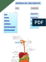 Caso Clinico Fisiop